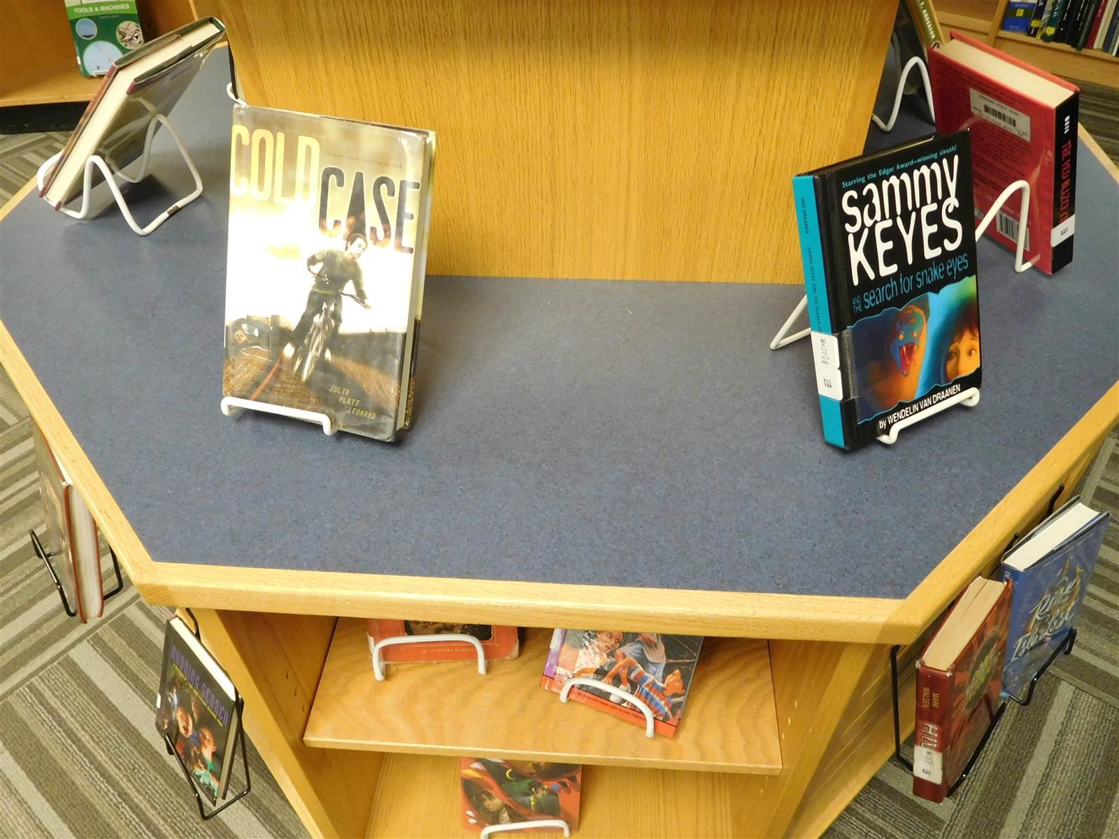 Library Display Table