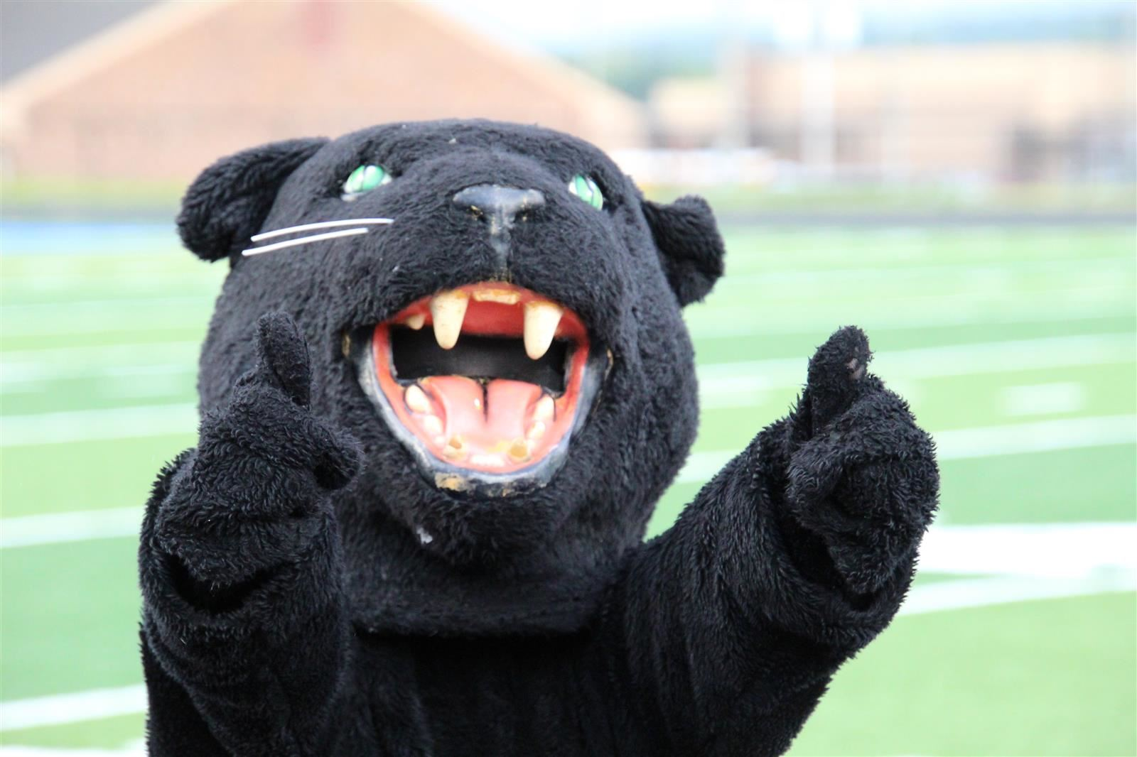 Panther mascot on football field