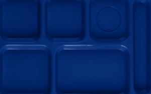 Blue lunch tray