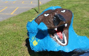 a bruin painted on a big rock